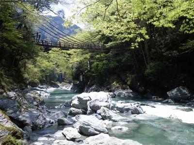 河原からかずら橋.jpg