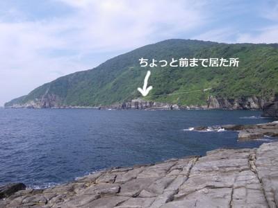 対岸から.jpg