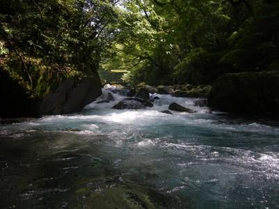 川の中から.jpg