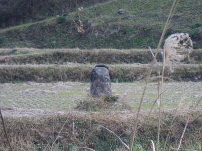 こしき石.jpg