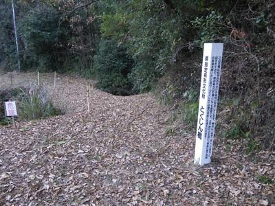 とくしん橋-1.jpg
