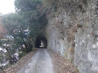 トンネル-1.jpg
