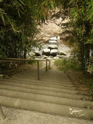 下り階段.jpg