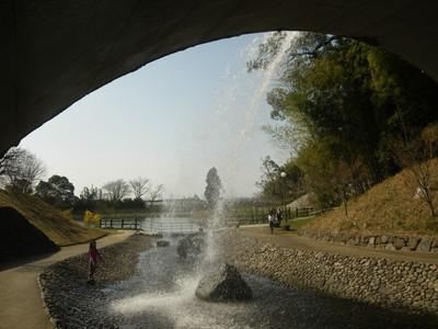 橋の下から.jpg