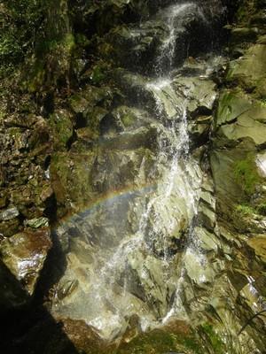 虹の谷公園.jpg
