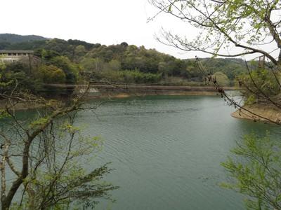 吊り橋発見.jpg