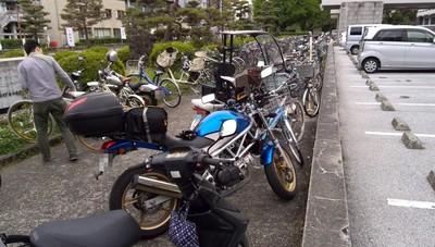 高知県庁前.jpg